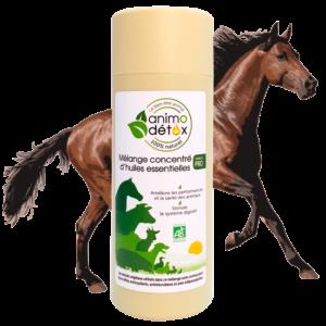 animodetox cheval huiles essentielles